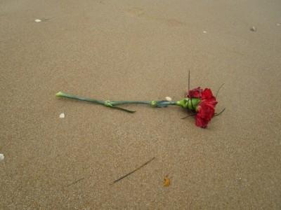 ...en voor de meisjes een bloemetje !