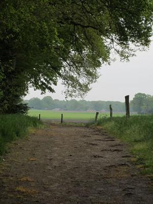 zandweg